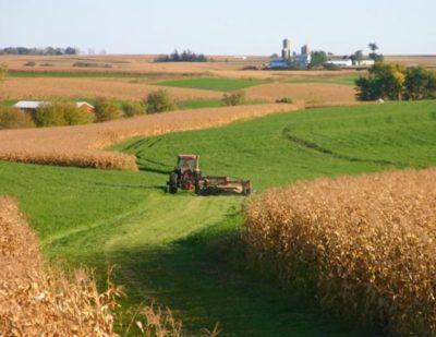 Сдача сельхоз земель в аренду