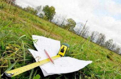 Образец заявления о предварительном согласовании земельного участка 2019