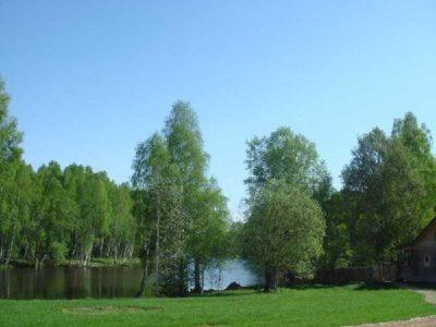 Изображение - Особенности использования земель общего пользования lesnye_ugodya_1_09040642-400x300