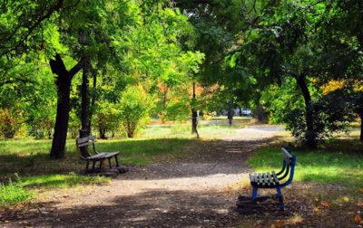 Изображение - Особенности использования земель общего пользования park_2_09035914-400x252