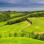 Как оформить в собственность арендованный земельный участок: под ИЖС, под ЛПХ