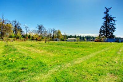 Как взять землю в аренду с последующим выкупом у государства?