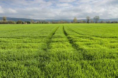 Перераспределение земельных участков межевой план, образец