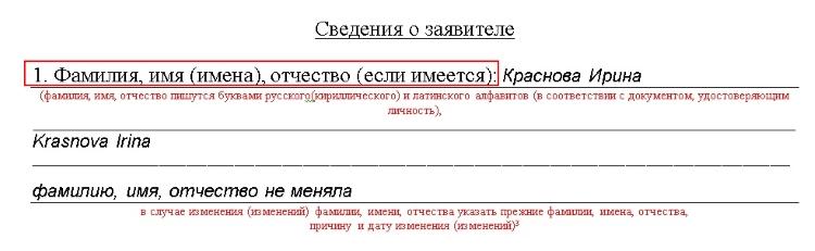 Образецзаявления на разрешения вид жительство в рф