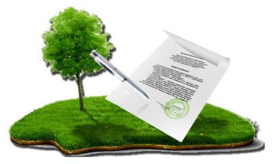 Договор дарения земельного пая между родственниками