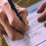 Правила аренды земли у государства, муниципалитета или в администрации города: сколько стоит, цены и льготы