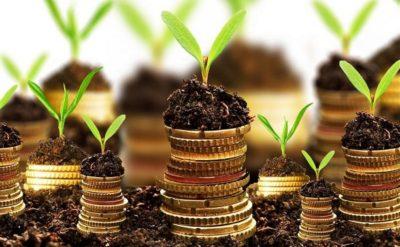 Передача земли сельхозназначения без торгов нарушение