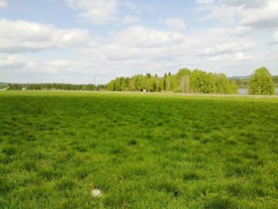 Всё об использовании земель под личное подсобное хозяйство (ЛПХ)