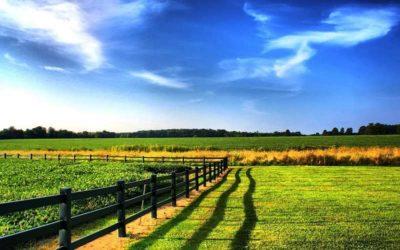Разрешение на строительство на землях лпх